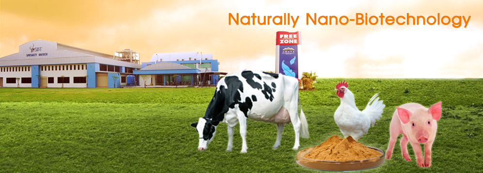 Naturally Nano-Biotechnology Products yeast extract